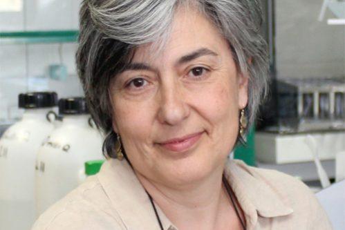 Fotografía Personal de Varela, Dª Isabel (Experta en Neurobiología de la Audición)