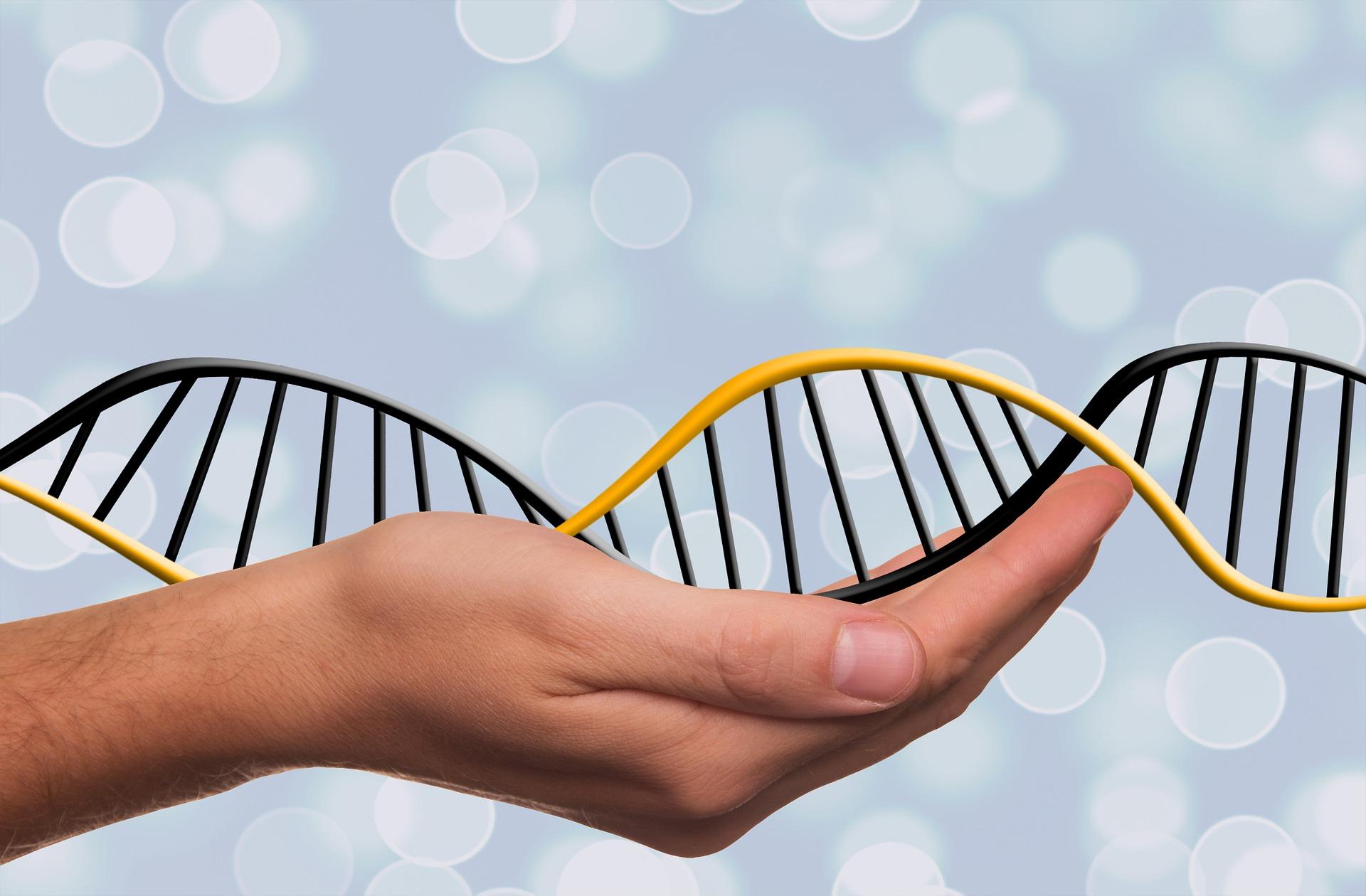 Gráfico de ADN sobre mano