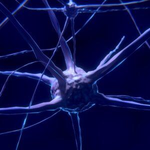 Dibujo de neurona conectada a otras